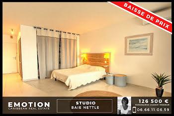 studio à Saint-Martin (971)