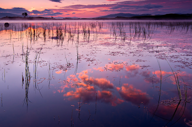 Photo: This is a sequel to the image I posted last Saturday. It is again a sunrise shot from the beautiful Rannoch Moor swap in Scotland. This picture was taken only moments before the one posted last week. It seems to be a perfect entry for #SwampySaturday and #DawnOnSunday. Both are curated by +Ray Bilcliff.  #SwampySaturday #DawnOnSunday #SunriseSaturday #ColorsOnSaturday #PlusPhotoExtract #photography #potd #FineArtPls