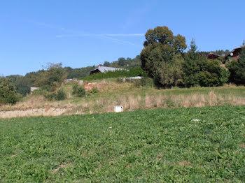 terrain à Chevenoz (74)