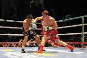 Saul Alvarez punches   Carlos Herrera during their clash at the Auditorio Siglo XXI in Mexico.