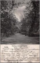 Photo: Aleea principală din Parcul Mare în 1910  sursa Facebook S.P. https://www.facebook.com/photo.php?fbid=1106577712748855&set=pcb.1106578079415485&type=3&theater
