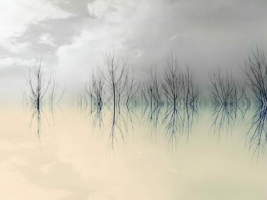 Il mio Limbo di Francesca Zaia