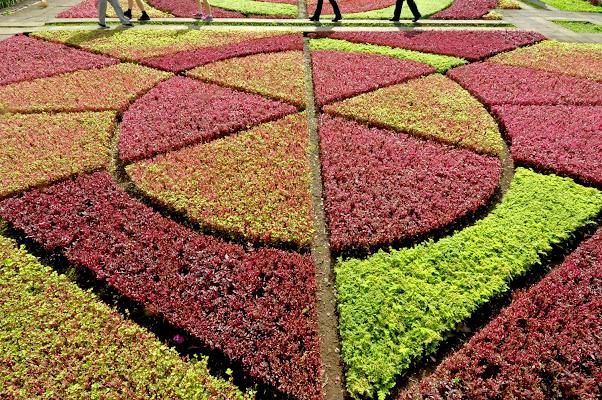 Simmetrie in giardino di Croatti Carlo