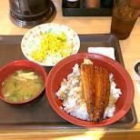 unagi dinner in Harajuku in Tokyo, Tokyo, Japan