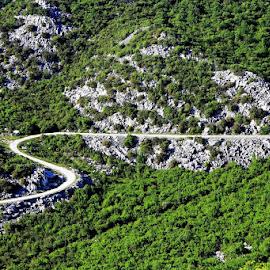 by Mirjana  Bocina - Transportation Roads (  )