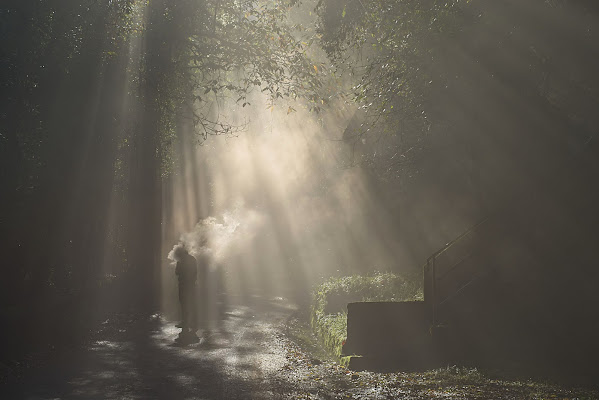 L'uomo della nebbia di Dariagufo