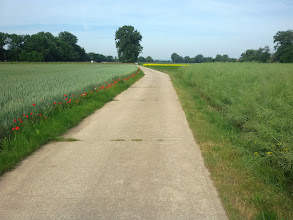 Photo: Weite Wege in der Nähe