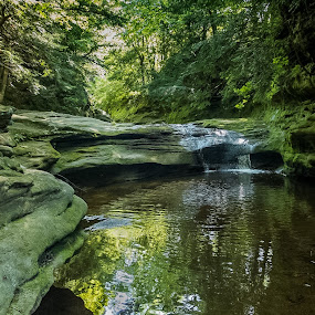 Limelight by Jeff Dugan - Landscapes Waterscapes ( stream, serene, natue, forest, rocks )