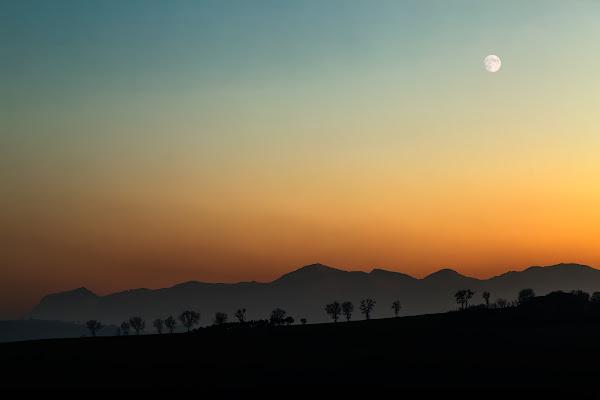 Sentinelle al tramonto di Franz78