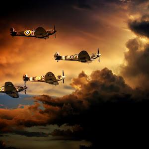 Sunset Flight 2.jpg