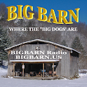 BIGBARN Radio icon
