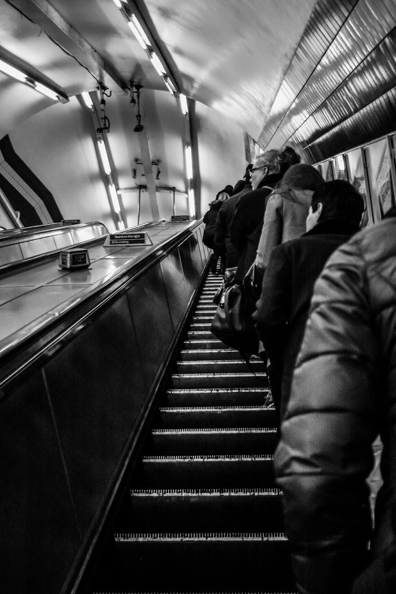 The tube di Mario Quaglia
