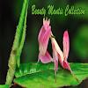 Beauty Mantis Collection APK