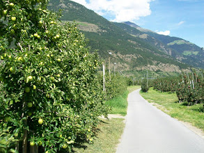 Photo: Zuid Tirol fruitteeltgebied