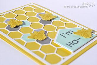 Photo: http://bettys-crafts.blogspot.de/2013/06/im-ha-bee.html