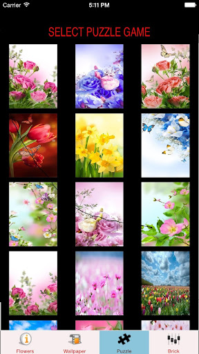 Flowers Wallpaper Puzzles