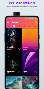LitWallz Premium Apk – 4K, HD Wallpapers (Premium Features Unlocked) 6