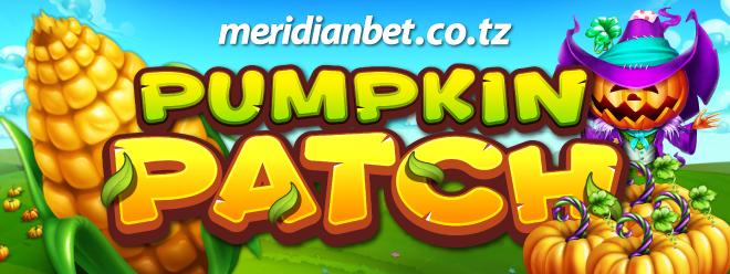 C:\Users\user\Downloads\Pumpkin-Patch_PR.png