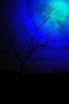 Urlo  nella notte di sevass