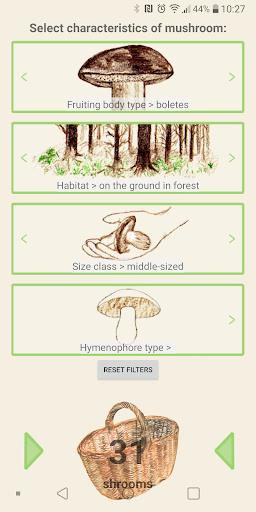 Mushrooms app  screenshots 4
