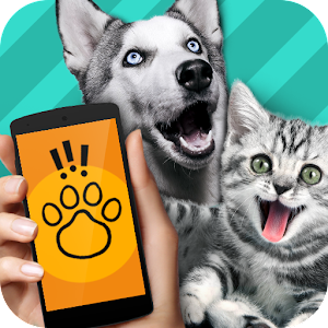 Animal Translator. Simulator for PC and MAC