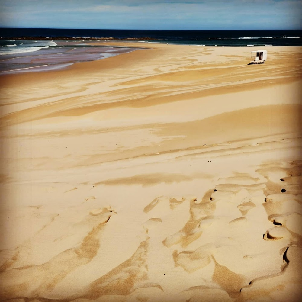 Two NMU students drown at Sardinia Bay beach - HeraldLIVE