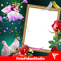 Love Birds Insta DP : Bird DP Frames & Wallpapers icon