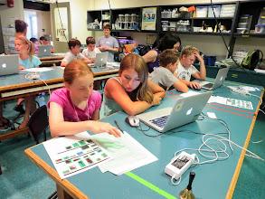 Photo: Students investigate principles of bridge-building