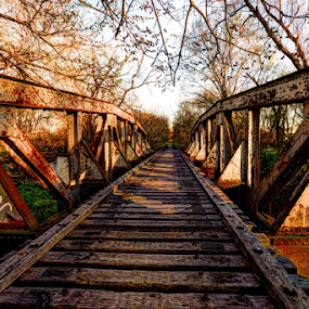 On The Bridge by Kent Moody - Buildings & Architecture Bridges & Suspended Structures ( railroad, texas, transportation, bridge, abandoned,  )