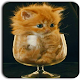 Cute Cat Wallpapers Download on Windows