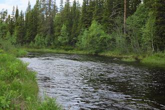 Photo: Nävran