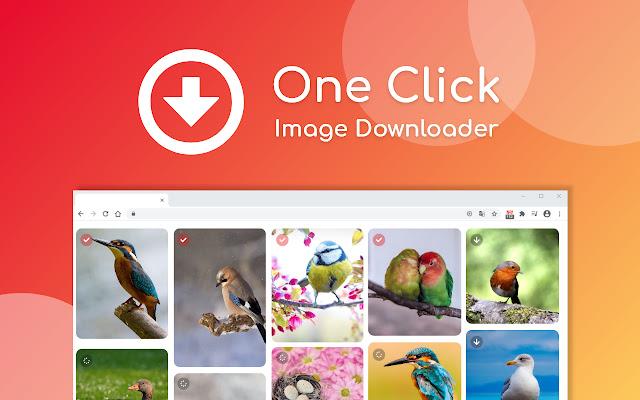 One Click Image Downloader