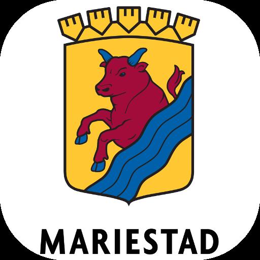 Synpunkter & fel Mariestad
