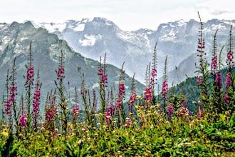 Photo: T-29 Plateau de Saix - Wanderungen Wanderungen und Ausflüge in Savoyen, Frankreich:  http://pagewizz.com/liste-wanderungen-und-ausfluege-in-hochsavoyen-frankreich/ (Aufrufe: 4892)