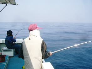 Photo: その後も釣る!釣る!
