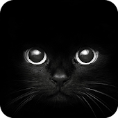 Black Cat eyes Theme CLauncher
