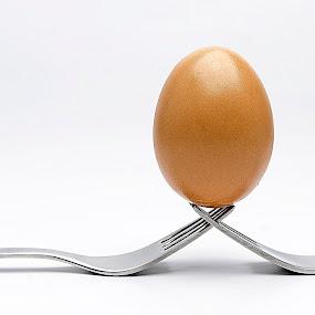 Egg by Damir Ipavec - Food & Drink Fruits & Vegetables ( shell, fork, pwcvegetables-dq, kitchen, egg )