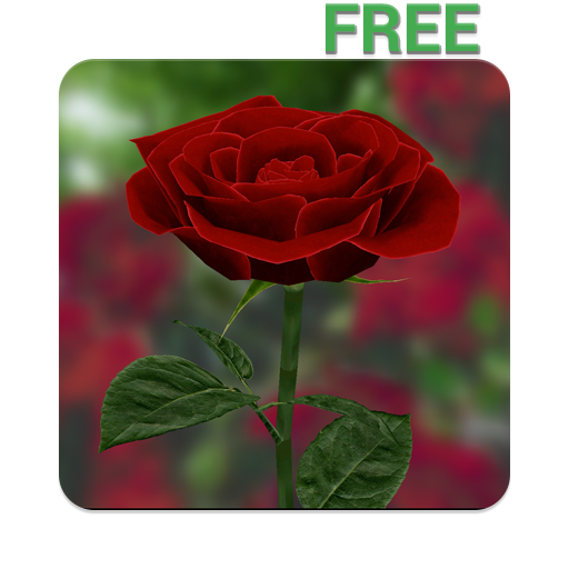 3D Rose Live Wallpaper Free