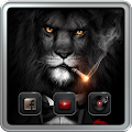 Lion in Costume Theme APK