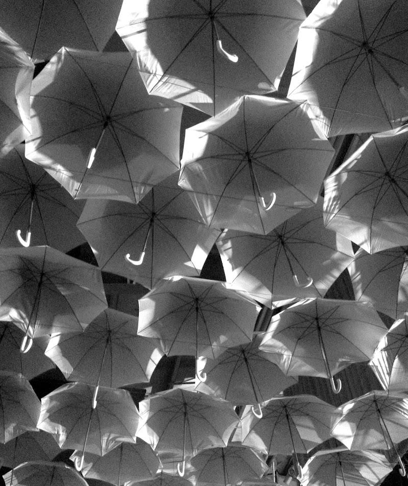 Soffitto ad ombrelli di albelele