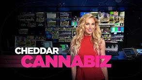 Cheddar's CannaBiz thumbnail