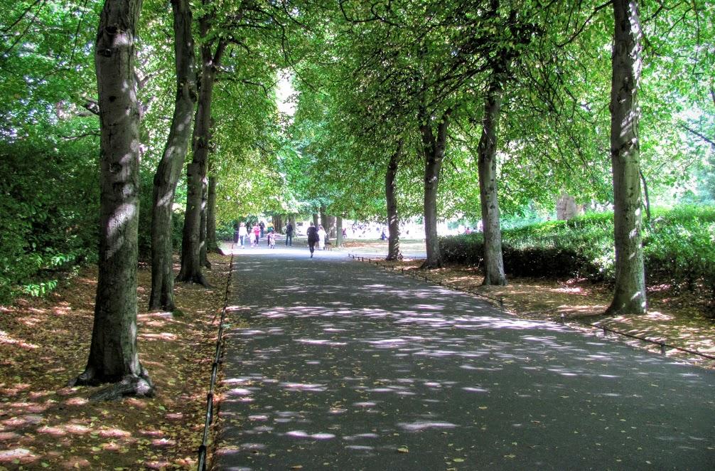 The Lime Walk St. Stephen's Green Dublin