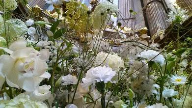 Photo: Das Grab Kolomans links vorne in der Melker Stiftskirche verschwindet im Blumenschmuck.