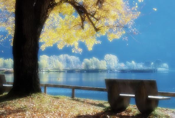 Il respiro del lago di albertoschiavoimmagini