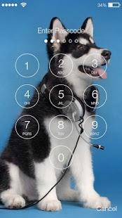 Siberian Husky Puppies Screenlock –PIN Lock Screen - náhled