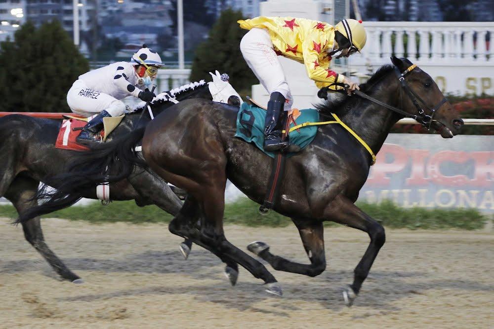 Poeta Arabe (Arabian Spirit) se queda con Handicap (1100m-Arena-VSC).