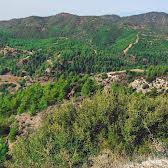 Larawan 3