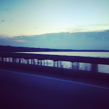 Photo: Progress of our drive. In South Carolina!