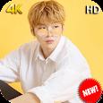 Wanna One Kang Daniel Wallpaper HD KPOP