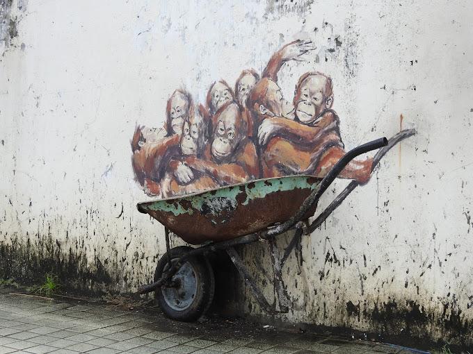 Orang Utan Murals